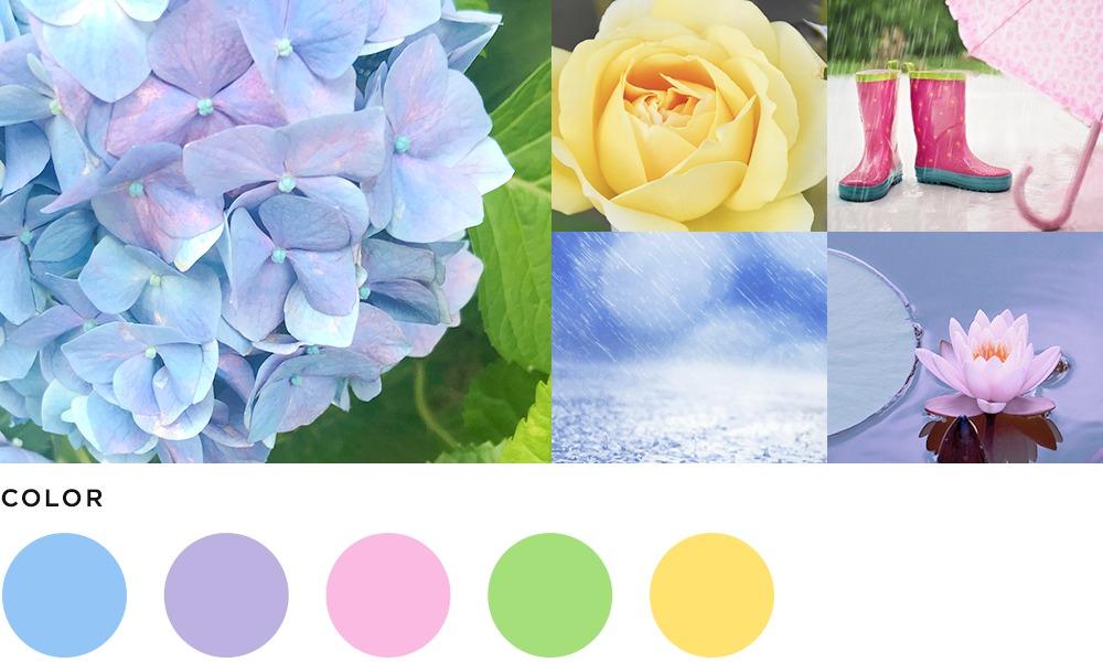 6月のイメージとカラーの画像